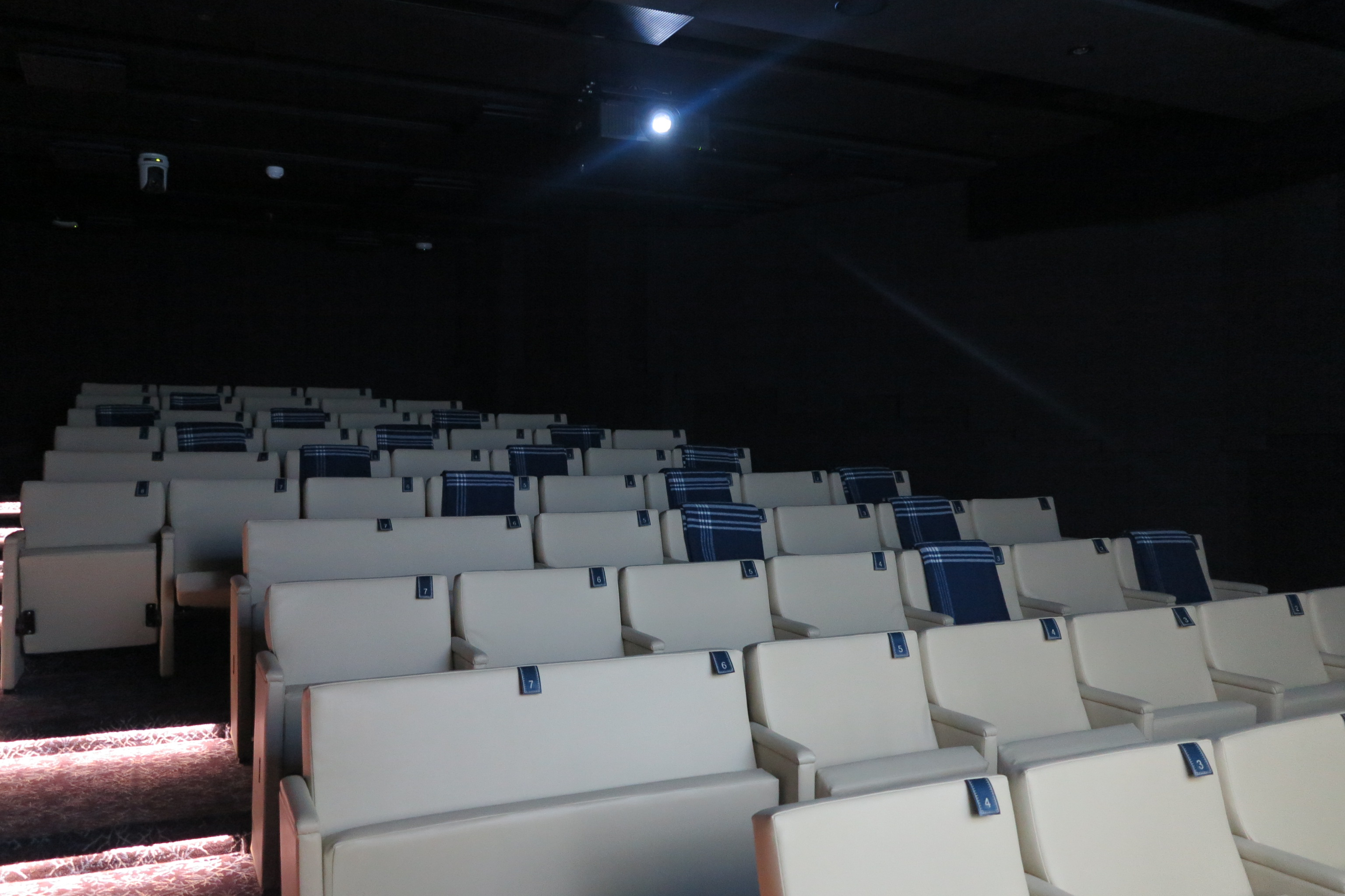 Big screen: The cinema